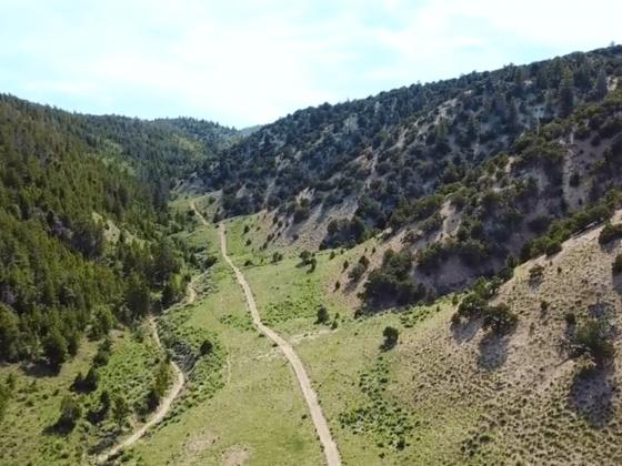 Guaranteed Elk Hunts Located In Scenic Utah