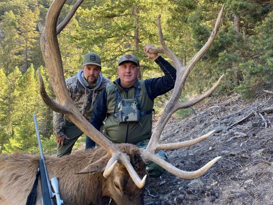 Top Rated Trophy Elk Hunt Guides & Outfitters
